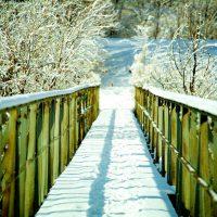 Snow Bridge - Bridge & Snow | Blurbomat.com