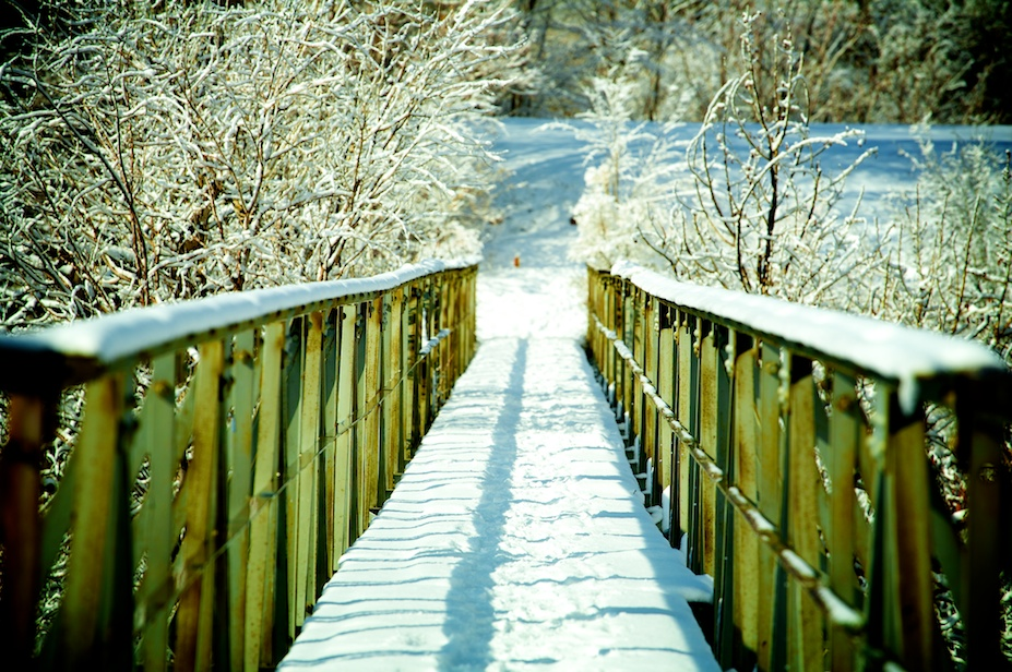 Bridge (and Snow)