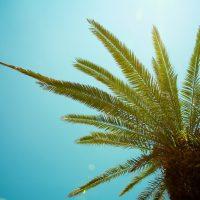 What Florida Means To Me - Destin, Florida | Blurbomat.com