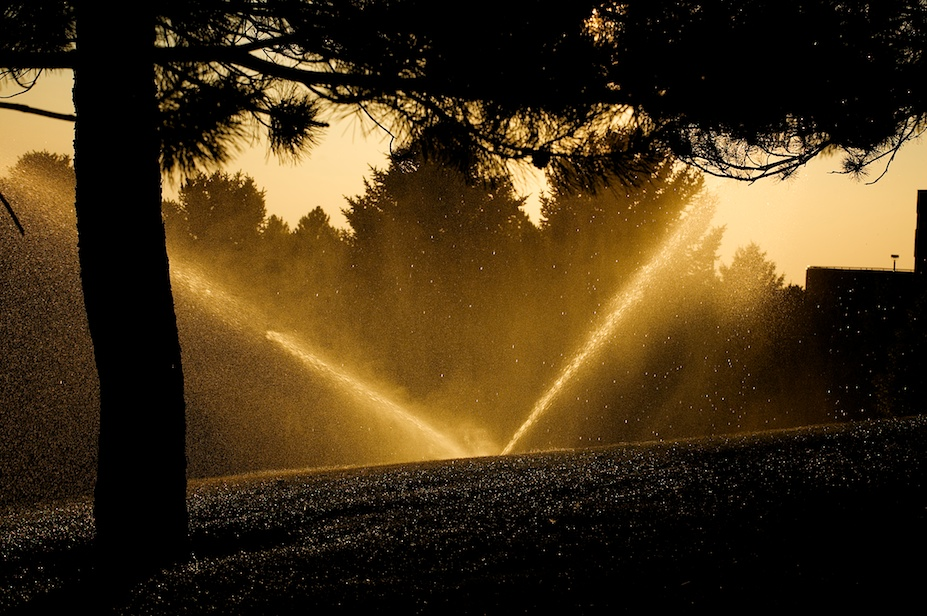 Sprinklers (Hot Fun in the Summertime) by Jon Armstrong.