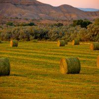 Bales - Rural Utah | Blurbomat.com