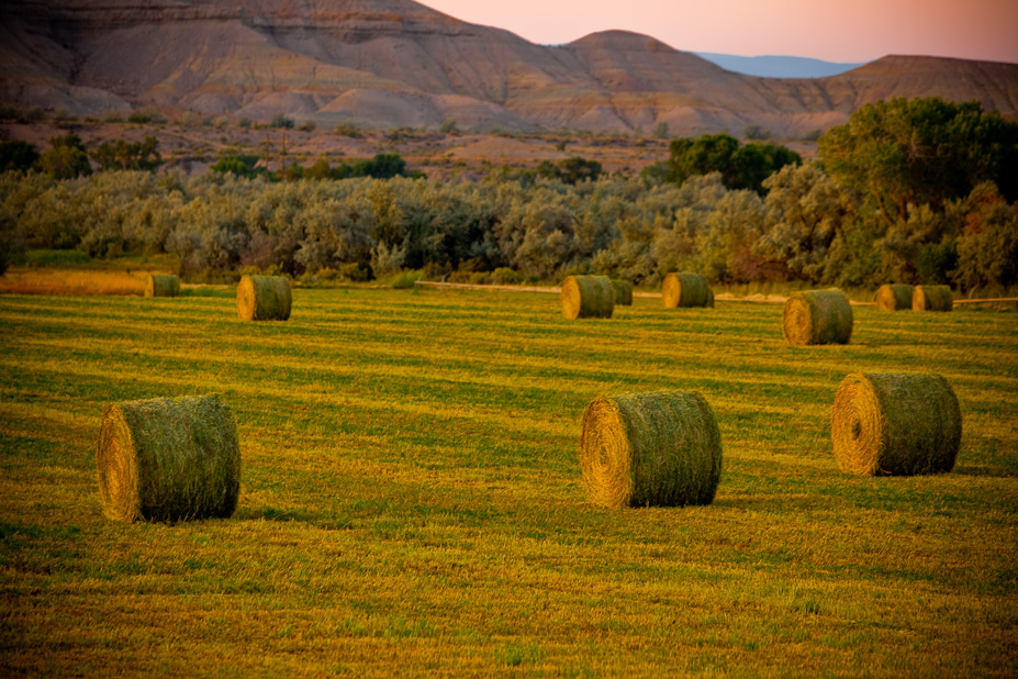 Bales by Jon Armstrong for blurbomat.com