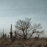 Straw Industry | Blurbomat.com