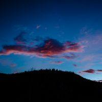 Pinked | Blurbomat.com