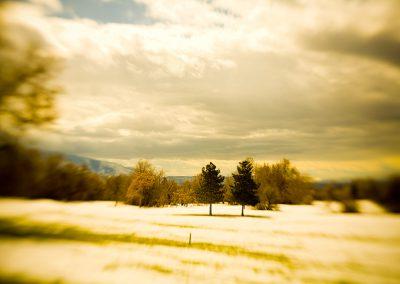 Melting - Lensbaby Winter Scene - Salt Lake City | Blurbomat.com