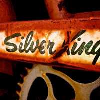120419-120313-IMG_2819-silver-king