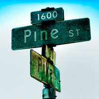 Pine and Pike | Blurbomat.com
