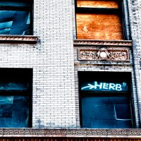 herb - Street level photo in downtown Seattle, Washington of second and third story windows. | Blurbomat.com
