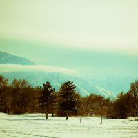 Hazy Shade of Winter | Blurbomat.com
