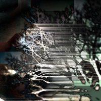 Jacked Branch | Blurbomat.com