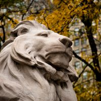 Blurbomat - Jon Armstrong - New York City Public Library Lion - Fortitude? Patience? \New York, 2012, architecture, autumn, blurbomat, Canon 5D Mark III, Canon EF 24-105mm f/4.0 L IS USM, Fortitude, Jon Armstrong blog, Jon Armstrong photography, New York City, New York City Public Library, New York City Public Library Lions, Patience, personal travel, sculpture