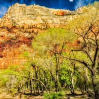 Zion Canyon From the Floor Up | Blurbomat.com