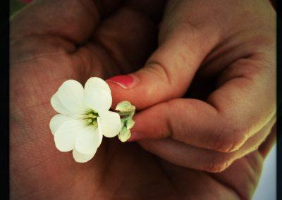 Her Hand in My Hand | Blurbomat.com