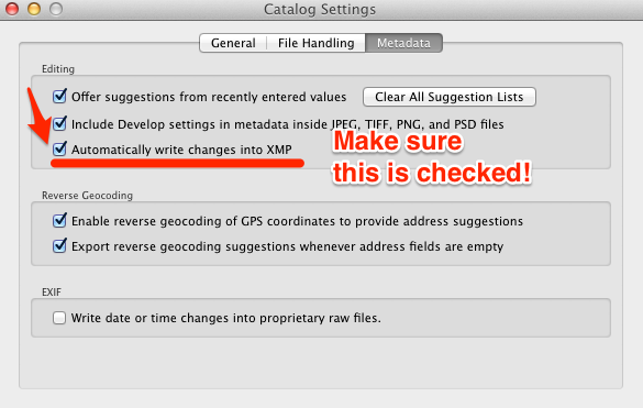 Lightroom Catalog Settings tip for looking straight down 34th Street