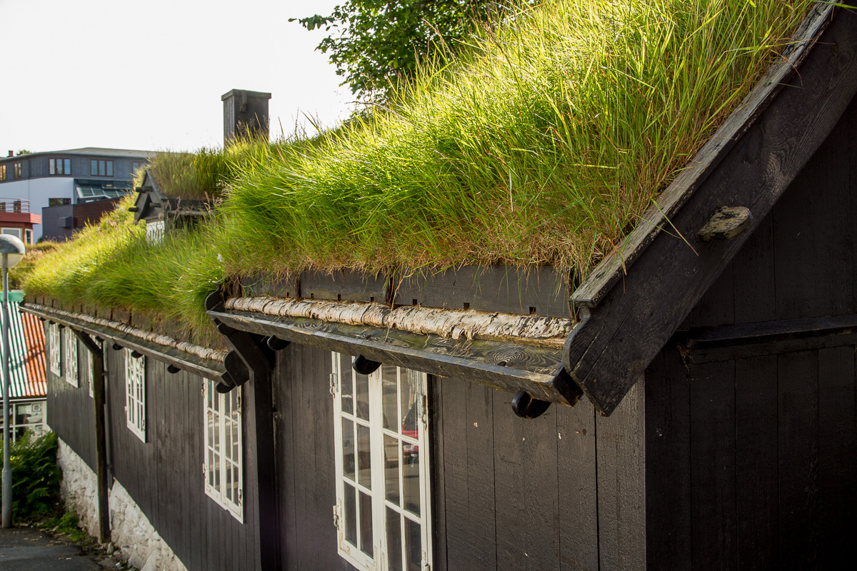 Grass roof detail taken in Torshavn, Faroe Islands - Blurbomat.com