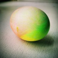 Egg-2015