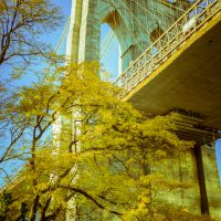 Brooklyn Bridge on Golden Leaf Day | Blurbomat.com